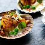 Gordon Ramsay Scallops Recipe