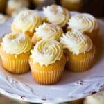 Best Gourmet Cupcake Recipe